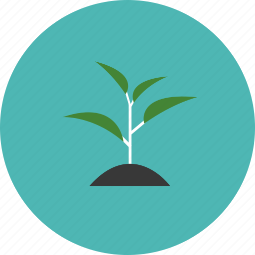 conservation, ecology, environment, nature, plant, sprout, tree icon