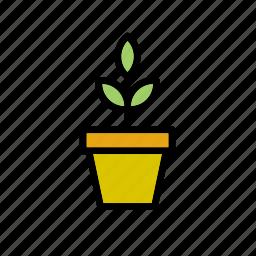decoration, flowerpot, garden, gardening, home, nature, plant icon