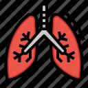 breathing, lungs, medicine, organ icon