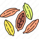 seasoning, spice, cardamom, seeds