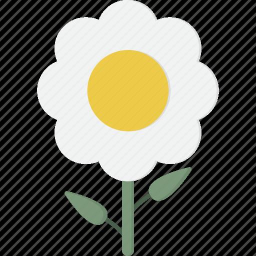 White, flower icon