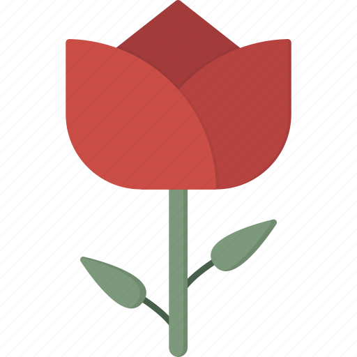 flower, red, tulip icon