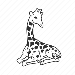 giraffe, large land mammal, long neck, mammal icon