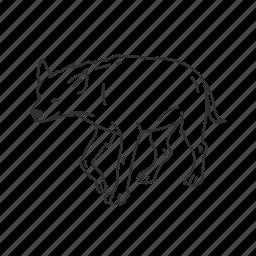 hyena, mammal, medium land mammal, predator icon