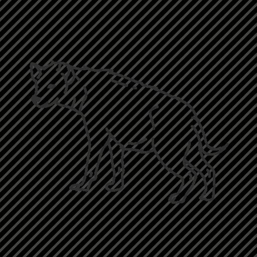 Hyena, mammal, medium land mammal icon - Download on Iconfinder
