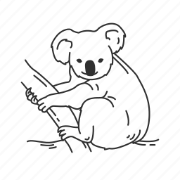 bear, koala, mammal, small land mammal icon