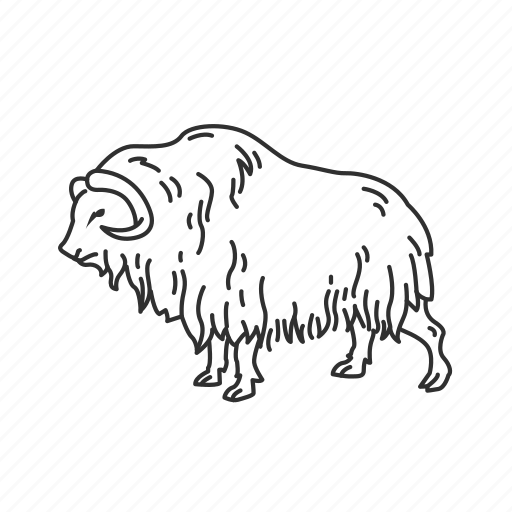 large land mammal, mammal, muskox icon