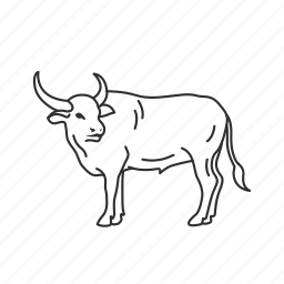large land mammal, mammal, ox icon