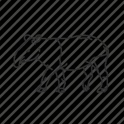 mammal, small land mammal, tapir icon