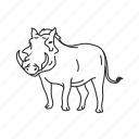 mammal, medium land mammal, pig, warthog icon
