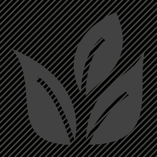 bio, eco, ecology, leaf icon