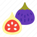 fall, fig, food, fruits, harvest, tree icon