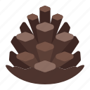 fall, nature, pinecone, plants, tree icon