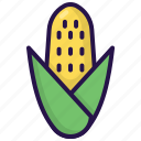 autumn, corn, fall, food, healthy, vegetable