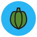 fruits, acorn, pepper, fall, squash, vegetables icon