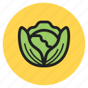 fruits, lettuce, cabbage, leaf, brussels, fall, vegetables icon