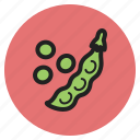 fruits, greengeans, beans, fall, edamame, vegetables icon
