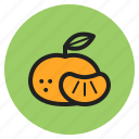 fall, orange, citrus, mandarin, shrub, fruits, vegetables icon