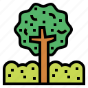 gardening, nature, plant, tree icon