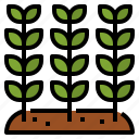 grow, leaf, nature, plant icon