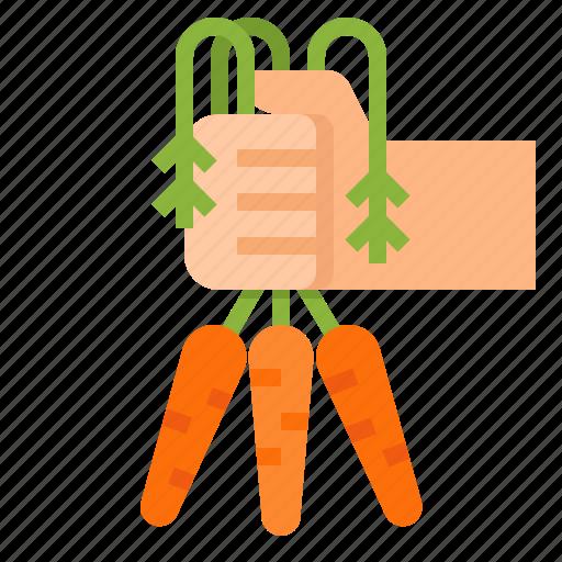 carrot, food, organic, vegetable icon