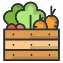 basket, carrot, farm, lettuce, vegetable