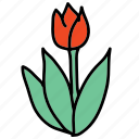 beauty, color, dutch, farm, spring, tulip icon