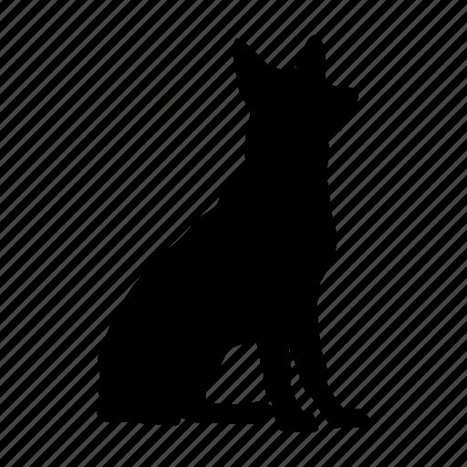 dog, perro, pet icon