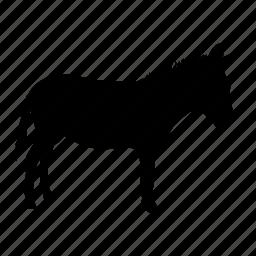 burro, donkey, mula icon