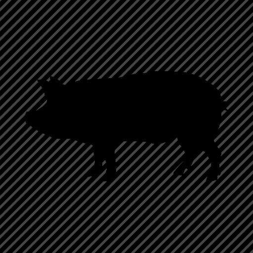 cerdo, ham, pig, piggy icon