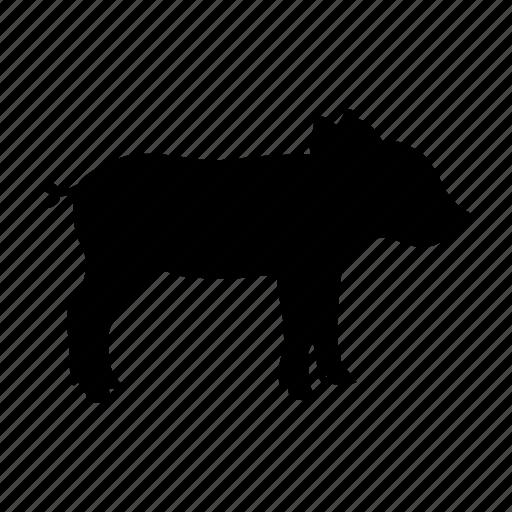 cerdo, pig icon