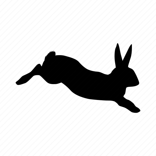 conejo, easter, farm, rabbit icon