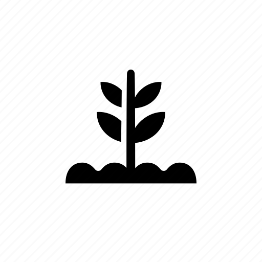farm, field, growth, plant icon