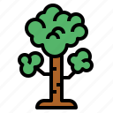 ecology, garden, nature, tree icon