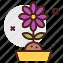 agriculture, flower, gardening, landscape
