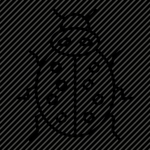 Animal, insect, ladybird, ladybug, garden icon - Download on Iconfinder