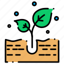 nature, plant, plants icon