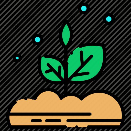 leafs, plant, plants icon