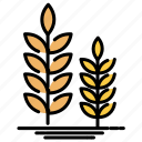 agricultural, farm, wheat icon