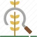 agriculture, crop, farm, farming, harvest icon