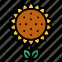 farm, flower, gardening, sunflower