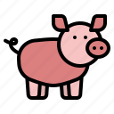 farm, animal, farming, pig