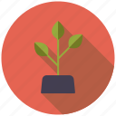 agriculture, farm, growth, plant, soil icon