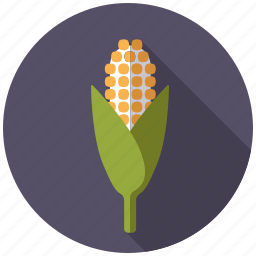 agriculture, cereal, cob, corn, farm, plant icon