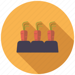 agriculture, carrots, farm, field, patch, soil, vegetables icon