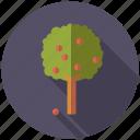 agriculture, apple tree, farm, fruit, plant