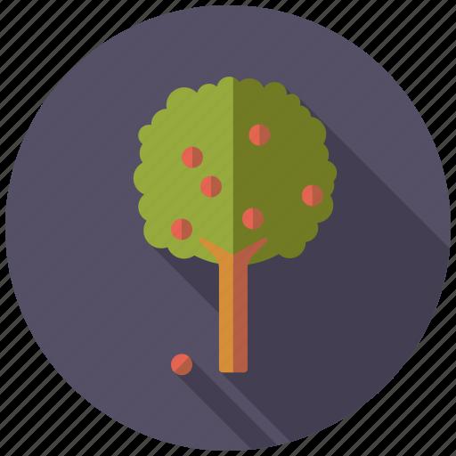 agriculture, apple tree, farm, fruit, plant icon