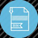 bin, document, extension, file