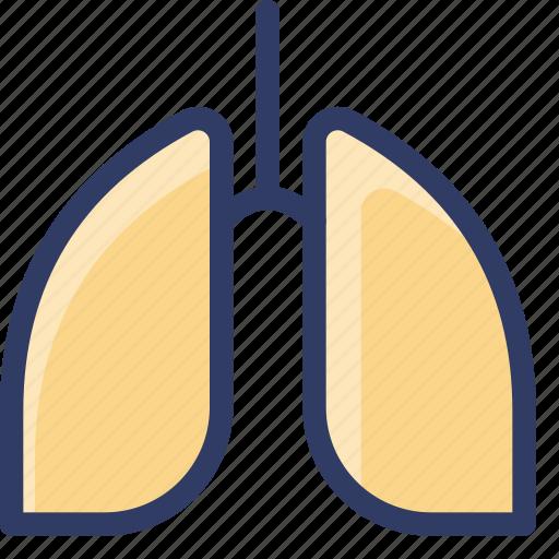 health, healthcare, lung, medical, organ icon