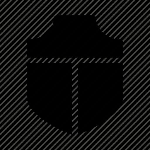 cash, exchequer, money, protect, shield icon